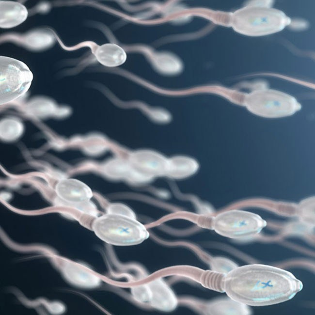 Spermavolumen